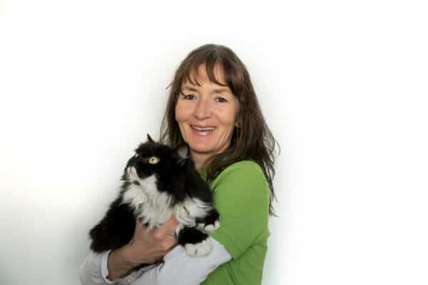 Dr Meding Tierarztpraxis Probst Nuernberg