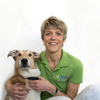 Dr Schmidt Tierarztpraxis Probst Nuernberg